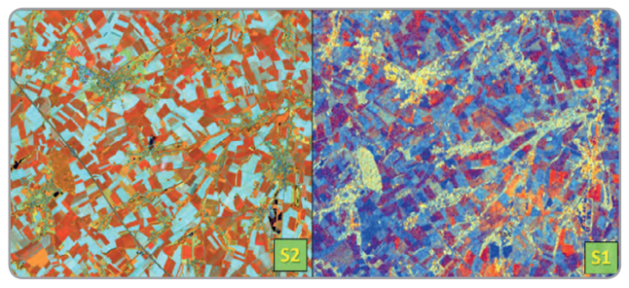 Example of optical and SAR images used for crop type classifications (S2 image acquired on 26 May 2017 – RGB:4, 3, 2, S1 image acquired on 6th of May 2017 - RGB:VH, VV, VH/VV)